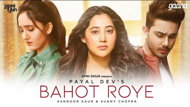 Bahot Roye Lyrics In Hindi | Payal Dev | Ashnoor Kaur