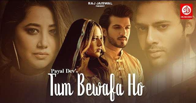 Tum Bewafa Ho Lyrics | Stebin Ben | Payal Dev